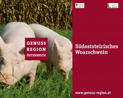 Südoststeirisches Woazschwein - Genussregion